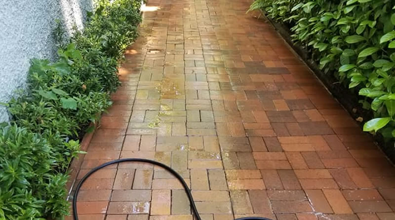 Pressure Washing and Power Washing Company